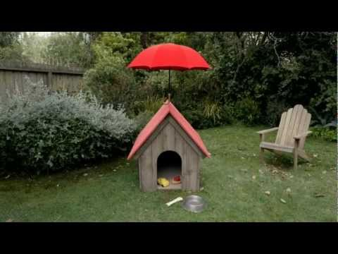 Travelers Insurance - The Cat Burglar (Dog)